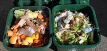 Caddies-of-food-waste