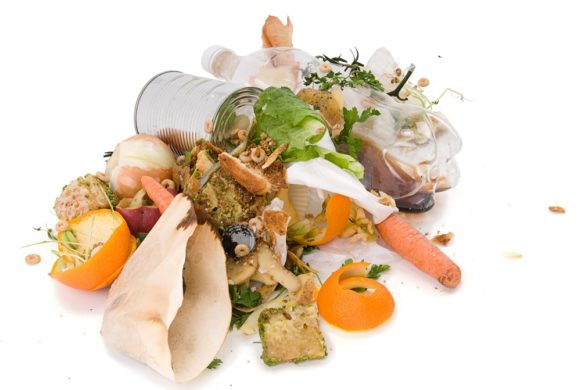 Harnessing food waste potential in the hospitality and education sectors