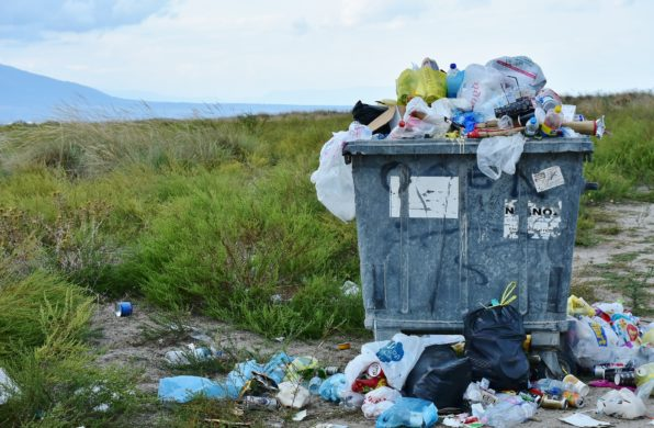 Energy-from-Waste 2019 predictions